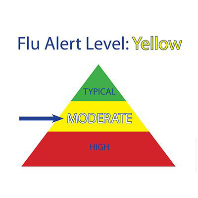 FLUALERT CONTROL SET / A&B / 1ML EA FLU